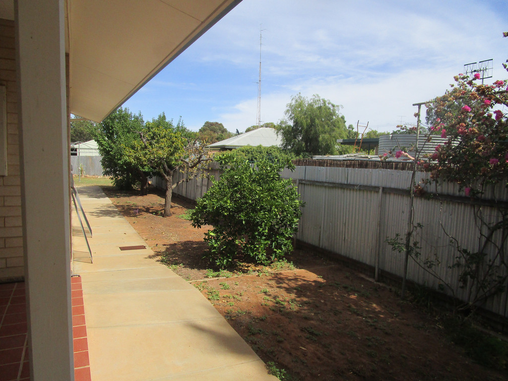 14 Grenache Ave BERRI SA 5343 Andrews Property